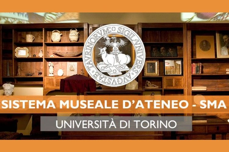 Sistema Museale d'Ateneo di Torino