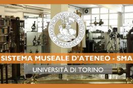 Sistema Museale d'Ateneo